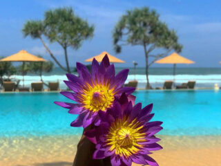 The Best Hotels in Sri Lanka