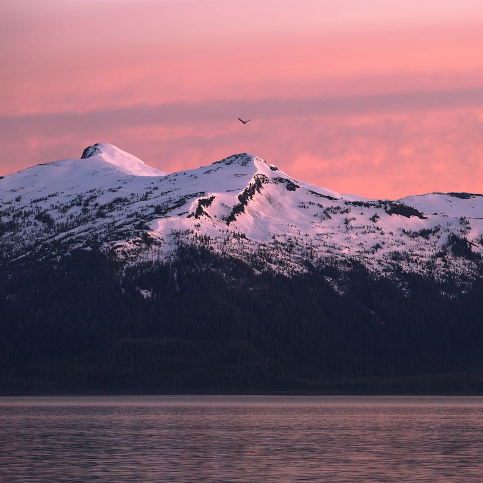 You'll see a different side of Alaska with UnCruise Adventures