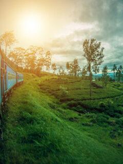 Kandy to Ella train in Sri Lanka