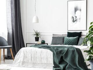 Best Airbnb in Victoria, BC