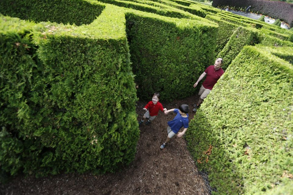 Kids of all ages (parents too!) love the maze at Vancouver's VanDusen Gardens