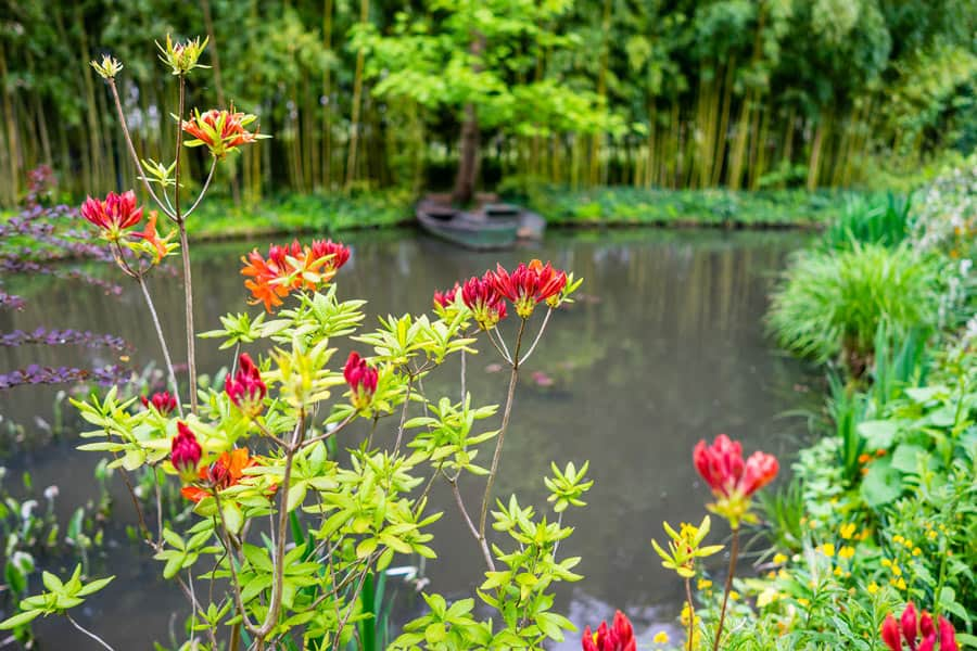 Claude Monet's gardens in Giverny, France are one of the most beautiful gardens in Europe.