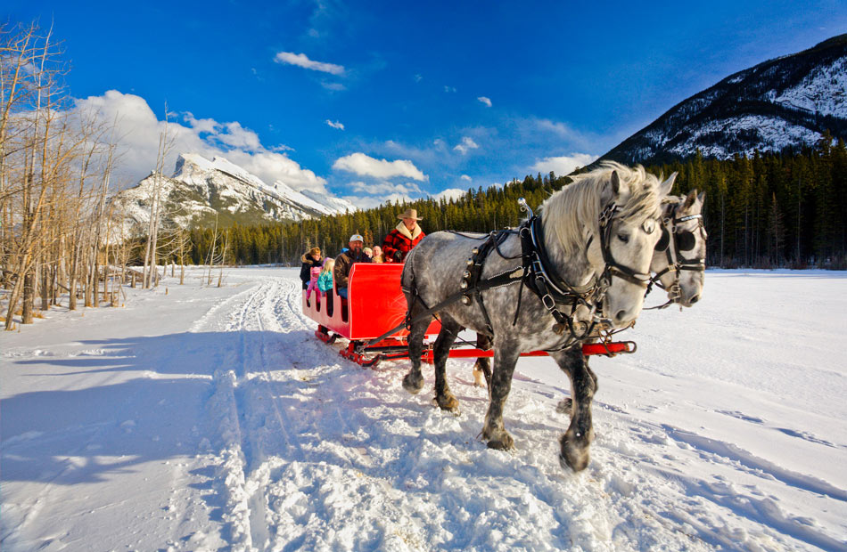 How about a winter sleigh ride in Banff? (Credit: Paul Zizka, Banff & Lake Louise Tourism)