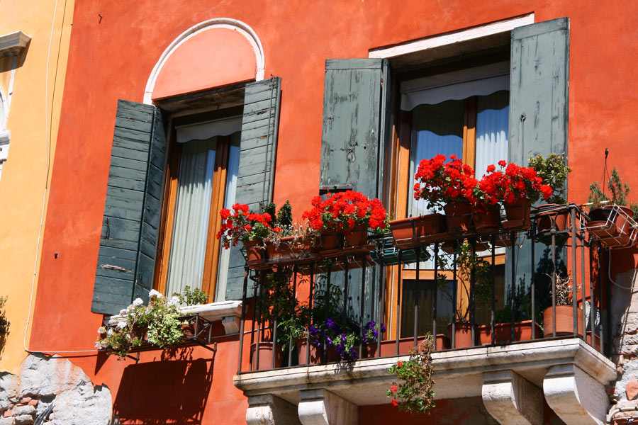 Flower boxes in the window in Venice