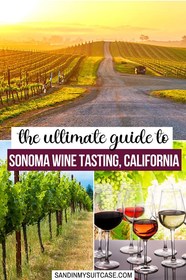 Sonoma wine tasting