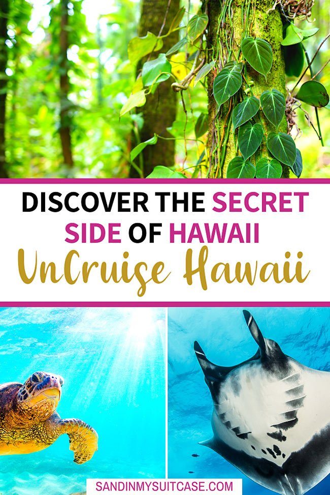 Discover the secret side of Hawaii with UnCruise Hawaii