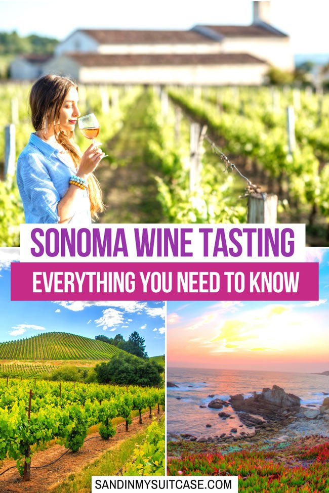 Wine tasting in Sonoma, California