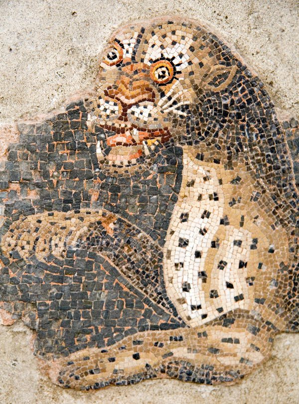 The mosaic-tiled floor in one 2nd century BC house on Delos shows Dionysus riding a panther.