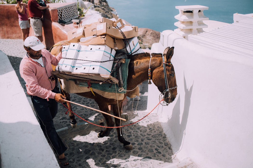 A donkey carries packages up the steps of Oia
