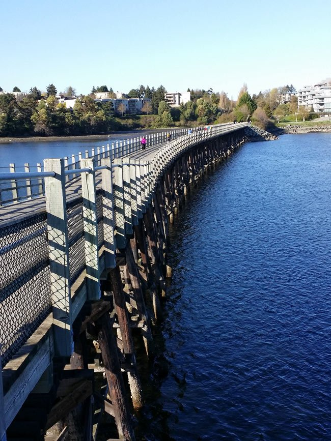 The wooden Selkirk Trestle Bridge, part of the Galloping Goose bicycling and walking trail, crosses the Gorge in Victoria, BC.