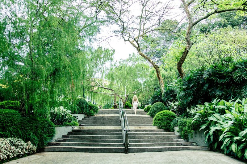 Singapore Botanic Gardens are one of the most famous gardens in the world.