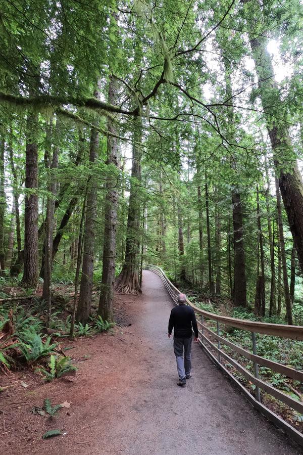 Hiking to Elk Falls