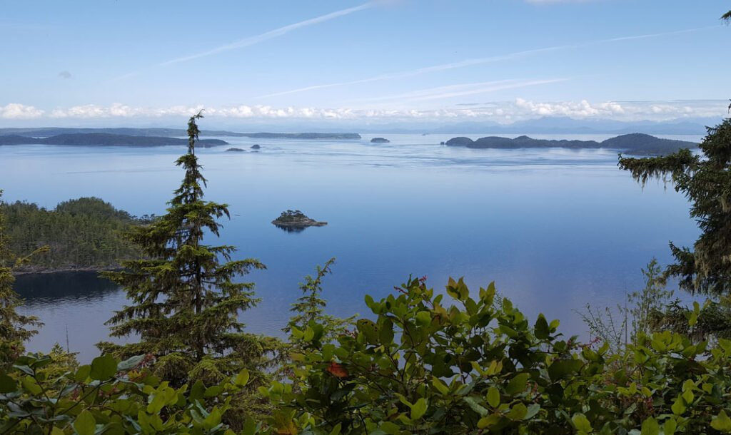 View at the top of the Blinkhorn Trail at Telegraph Cove