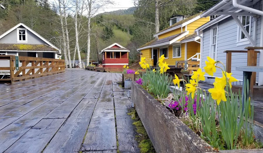 Historic cabins and boardwalk at Telegraph Cove, Vancouver Island