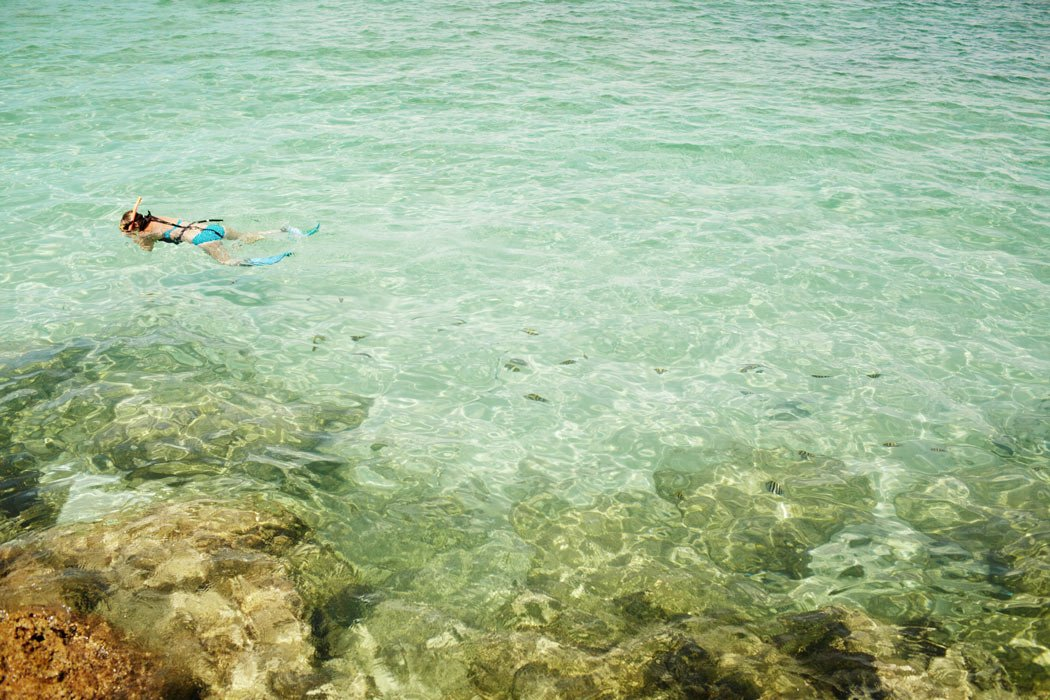 One of the top Cabo water activities is snorkeling