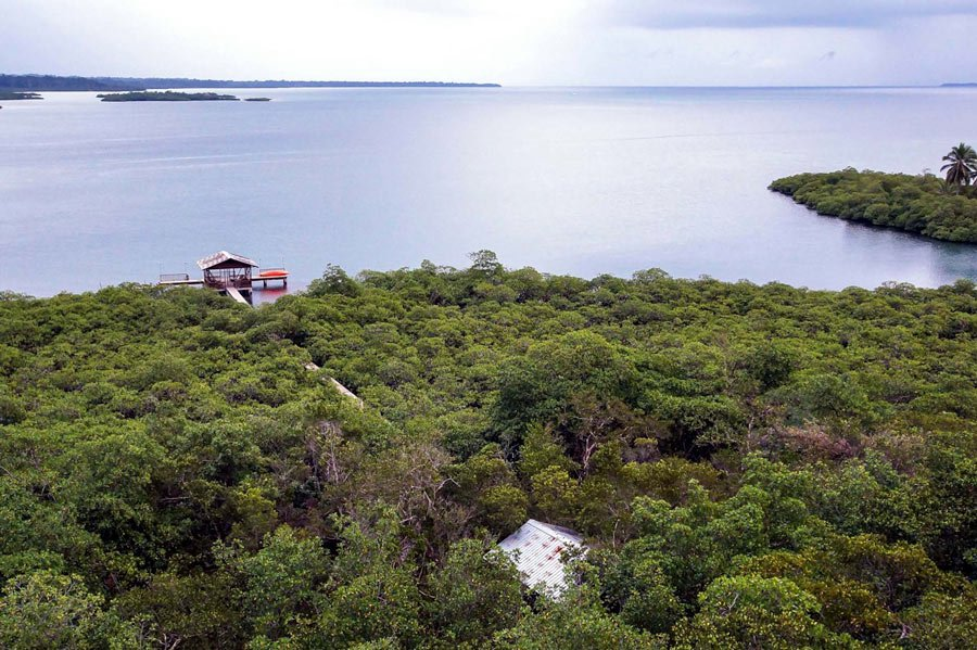 Birdwatchers and nature enthusiasts love Tranquilo Bay Eco-Adventure Lodge