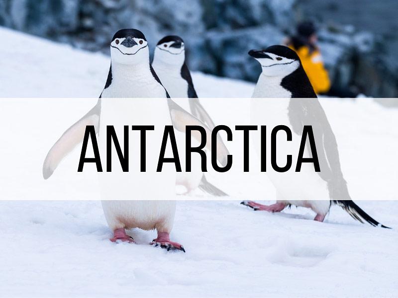 Antarctica Destination