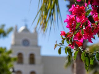 Day Trips From Cabo San Lucas