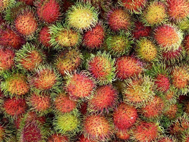 Rambutan Mexican Fruit