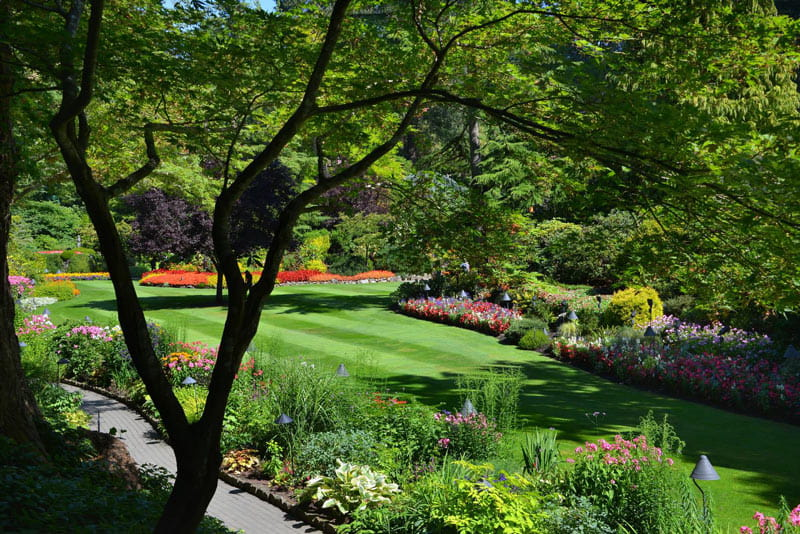 The Sunken Garden at Butchart Gardens has over 150 flower beds.