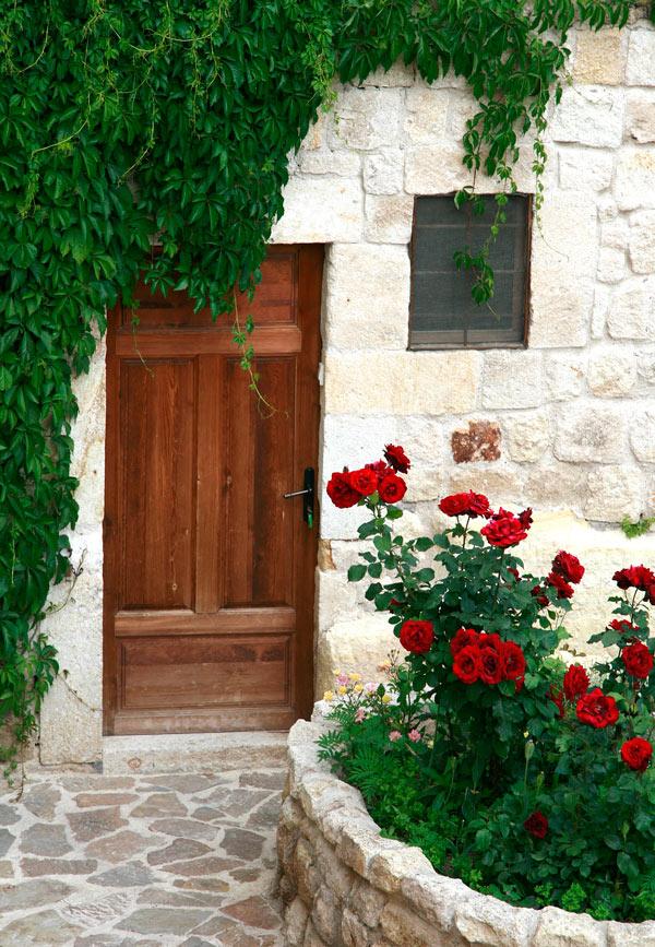 Roses in bloom at Esbelli Evi