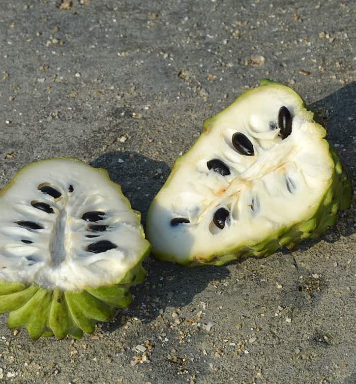Mexican Cherimoya Fruit