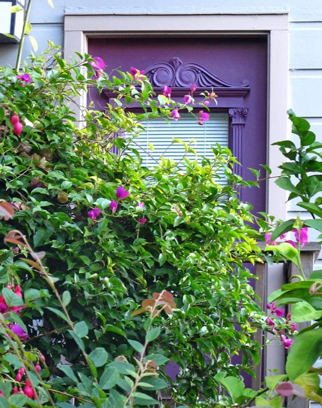 Filbert Street doorway, San Francisco neighborhoods
