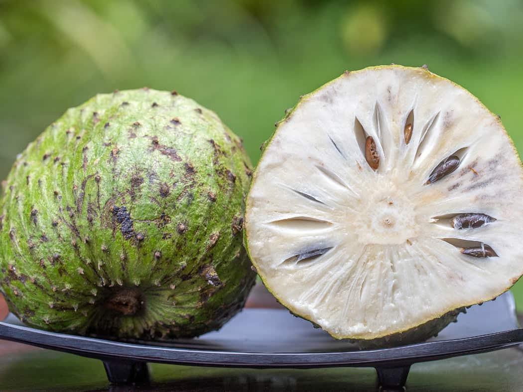 Soursop is a native Hawaiian fruit