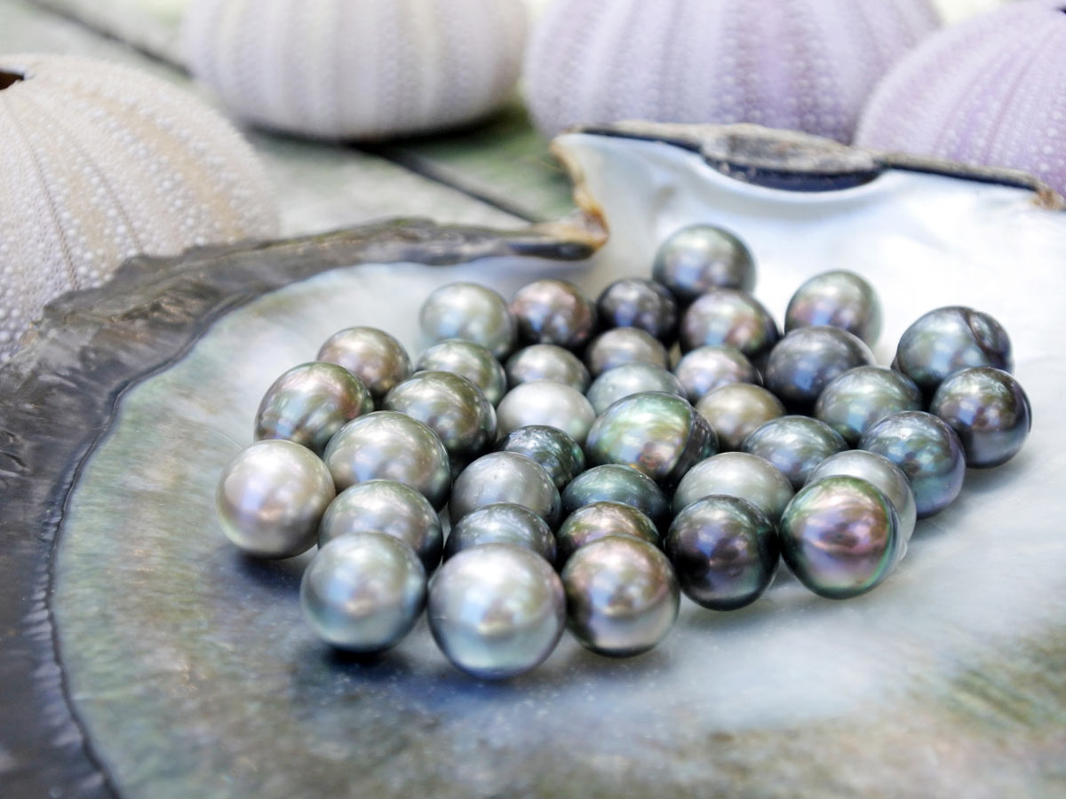 Shop for black pearls in Vaitape