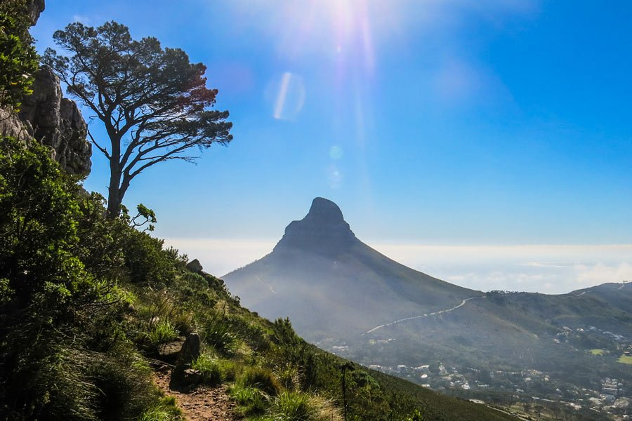 A Table Mountain hike with views of Lion's Head
