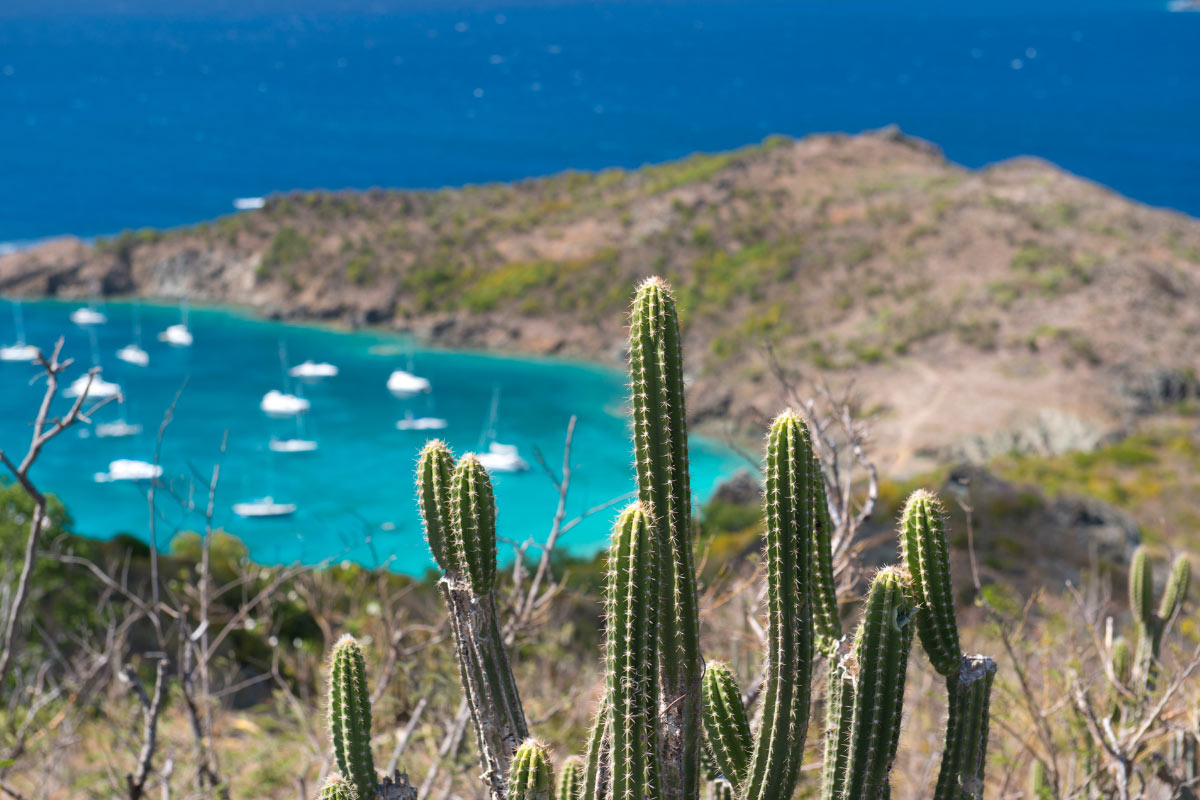 One of the fun things to do in St. Barts is to hike down to Columbier Beach.