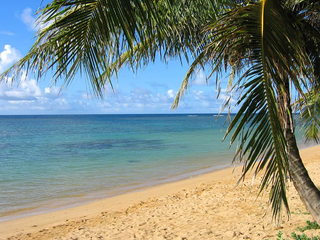 One of the best beaches in Kauai for swimming on the North Shore is Anini Beach.