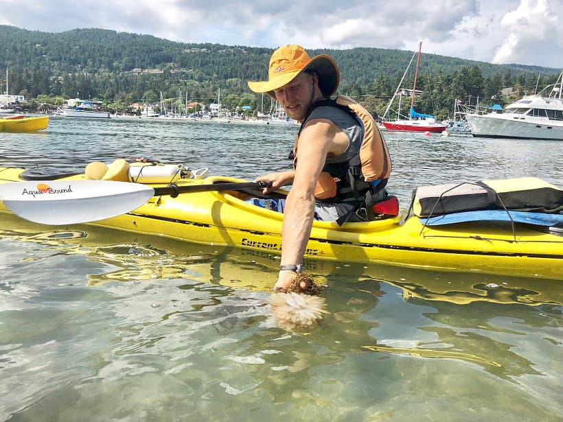 Kayaking is one of the fun things to do in Salt Spring Island if you love getting out on the water.