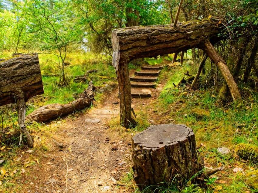 Ruckle Provincial Park is one of the most beautiful places in Salt Spring Island.