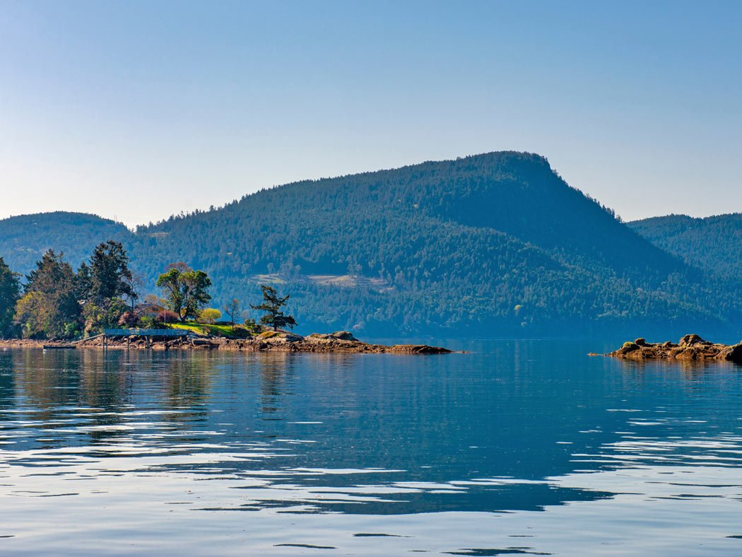 What to do on Salt Spring Island when it's hot? Go swimming at Vesuvius Bay!