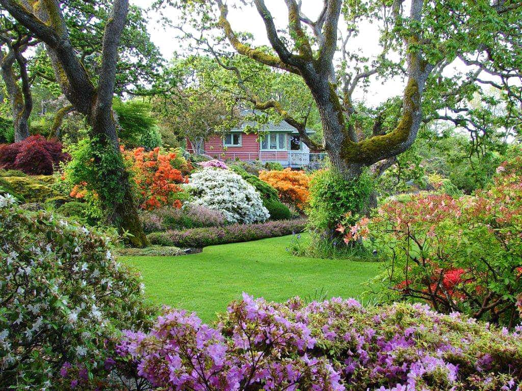 The Abkhazi Garden may be small, but it's one of the most beautiful gardens in Victoria, Canada