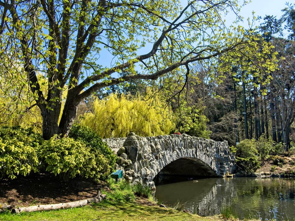 Beacon Hill Park is one of the most popular gardens in Victoria, used by many people every day.