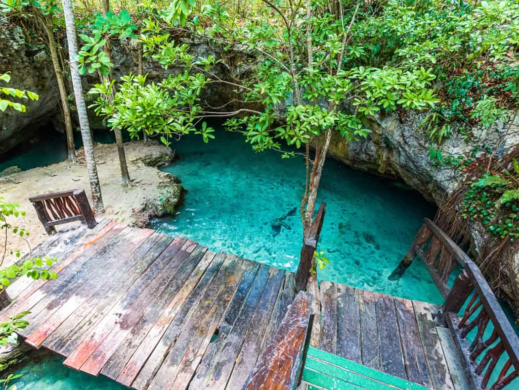 Gran Cenote is the grand-daddy of cenotes in Tulum.