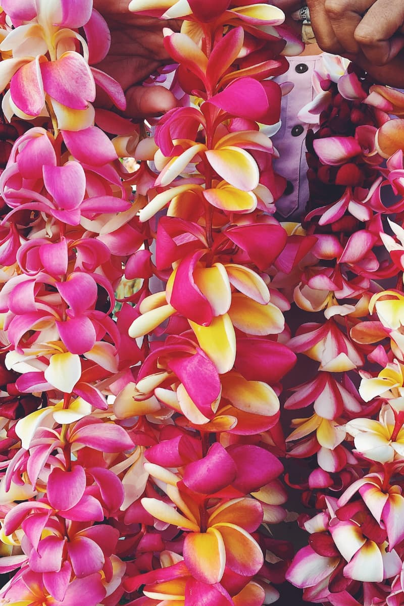 Hawaiian flower leis are one of the most authentic Hawaiian gifts that anyone would be delighted to receive.