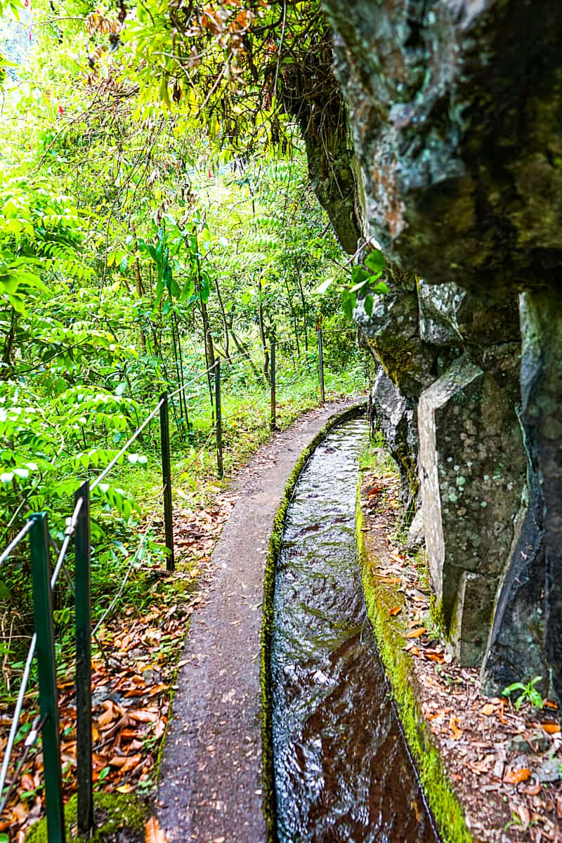 There are more than 200 levada trails like this in Madeira.