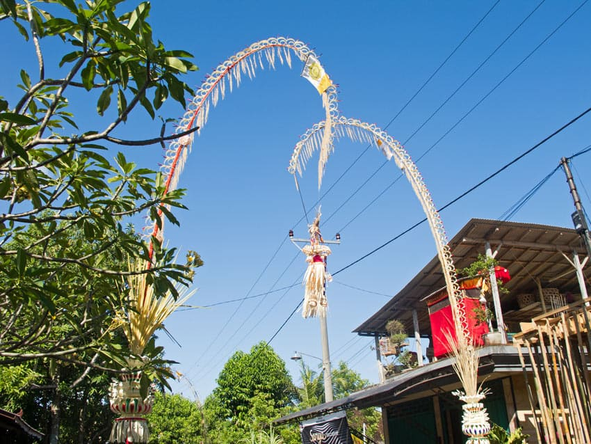 """Tall, curved bamboo poles (called """"penjors"""") decorate Bali village roadsides during the Galungan festival."""
