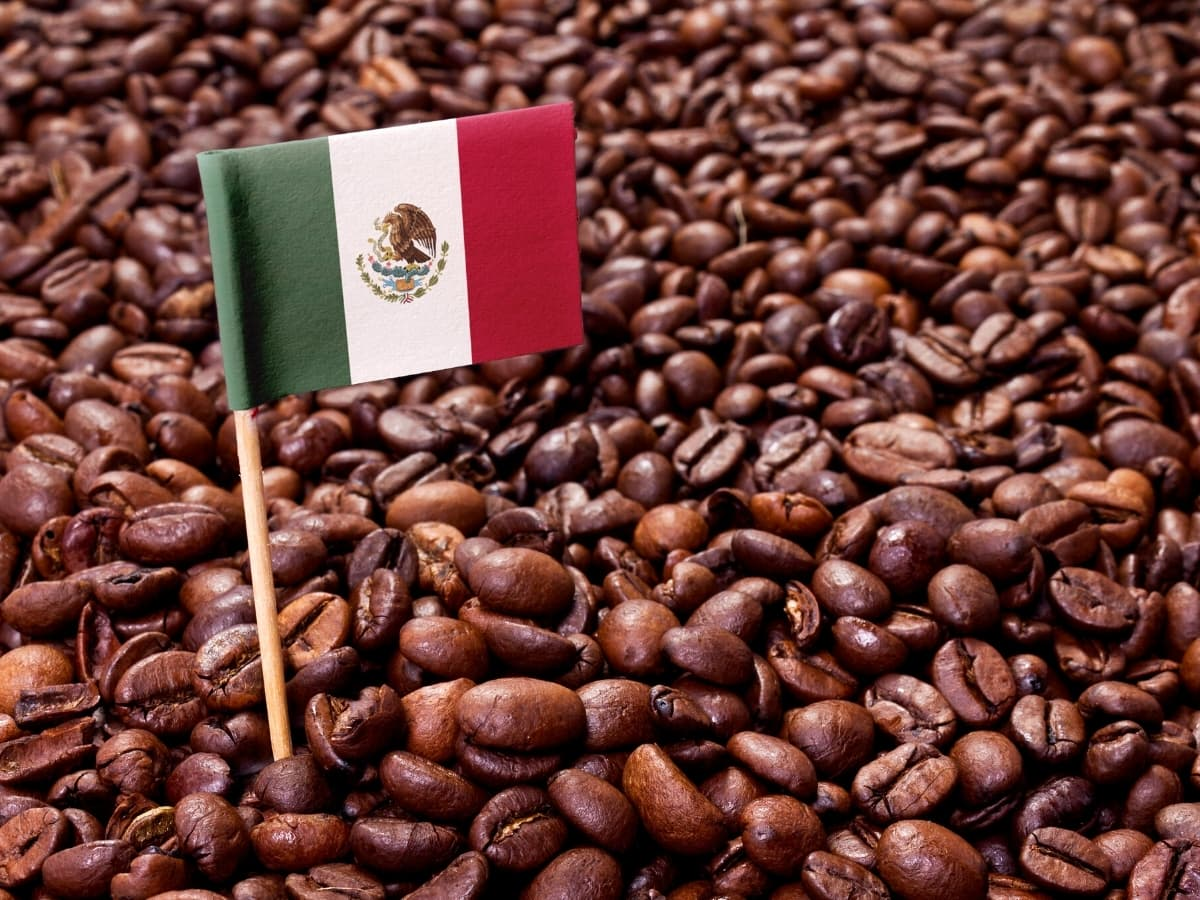 Coffee is one of those well-loved Mexican gifts that you can easily bring back for anyone on your gift list.