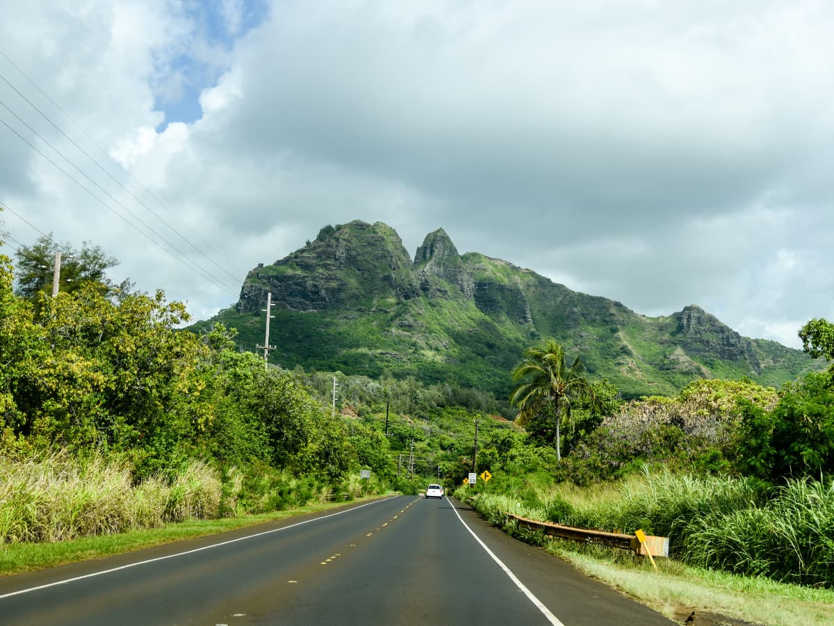 Driving in Kauai - watch out for chickens crossing the road and slow drivers.