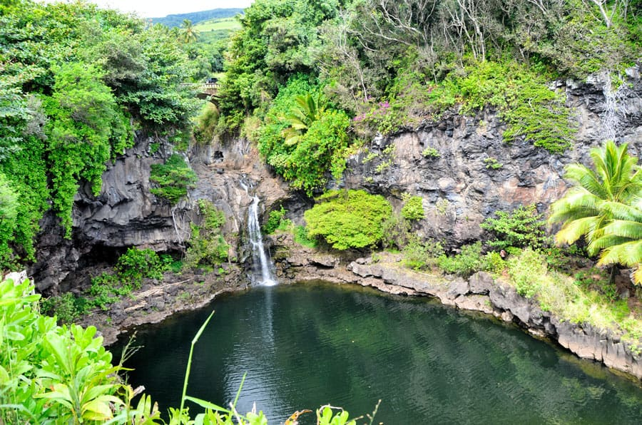 There are at least 10 beautiful waterfalls on the Hana Highway.