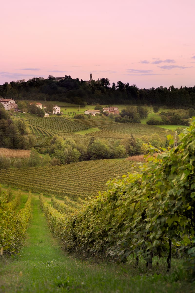 One of the most romantic day trips from Venice, Italy, is a Prosecco wine tasting tour with lunch.