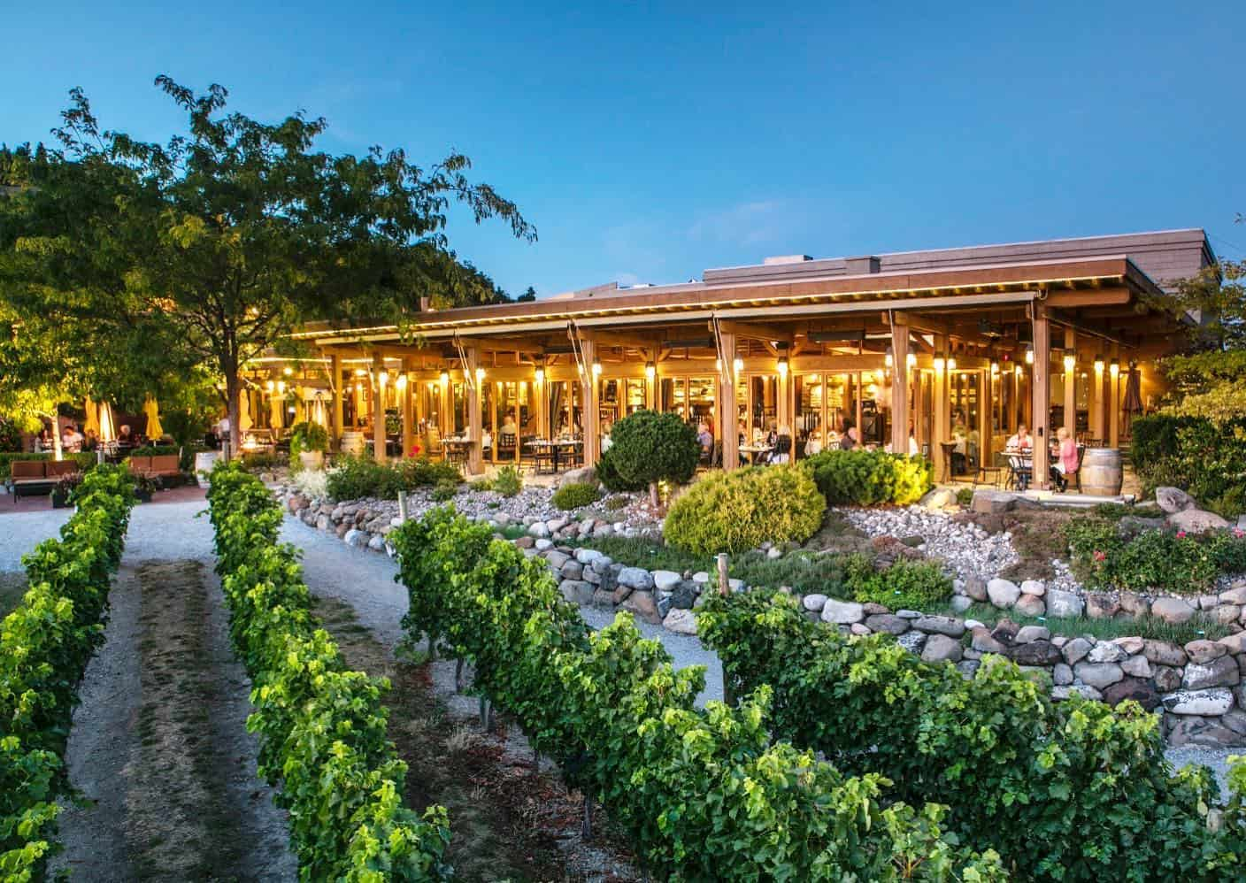 One of the original Okanagan winery restaurants, the Old Vines restaurant has built a reputation for serving spot-on food in a beautiful setting.