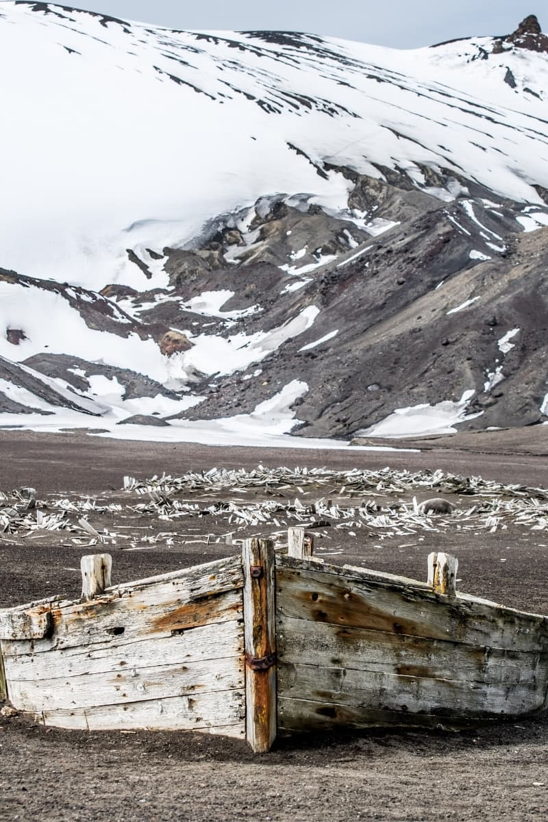 The broken remains of wooden boats litter many beaches in the Antarctic Peninsula.