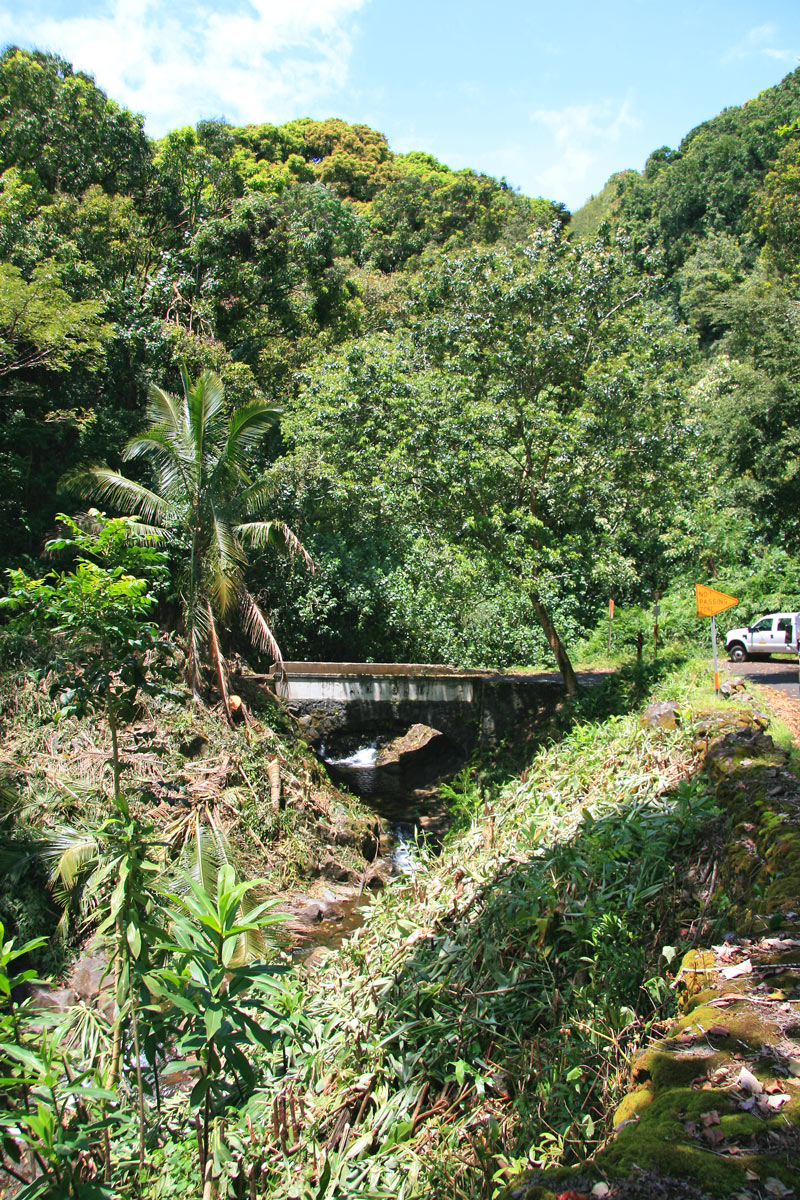 The narrow road to Hana has 59 bridges, many of which are one-lane bridges.
