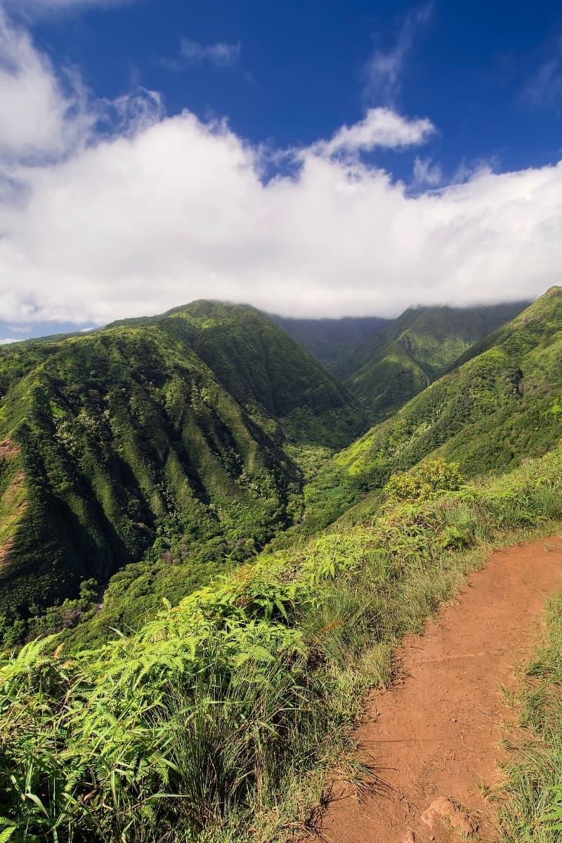 Hike Waihe'e Ridge in Maui for awesome views, including of Makamakaole Falls.