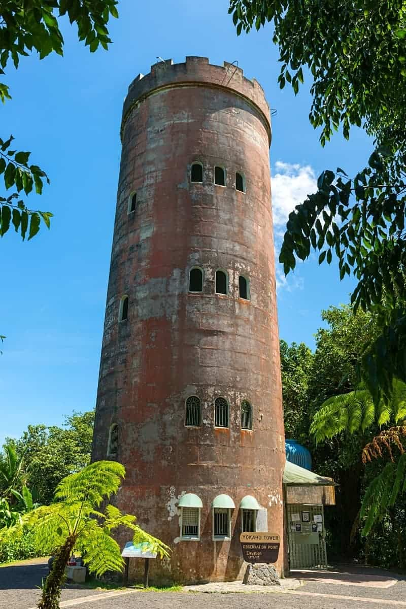 You get great views from the Yokahu Observation Tower in El Yunque National Forest, Puerto Rico.